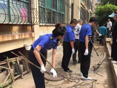 创卫在行动:济南城管集中清理毁绿种植600余平
